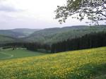 Sauerland Urlaub, Winterberg Langewiese Aktivität, Wanderung