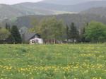Rothaargebirge Wanderung, Ferienhaus Karles Sommervergnügen, Winterberg-Langewiese Ferien